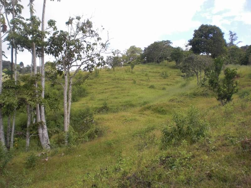 Remax real estate, Costa Rica, San Vito, Linda View property and waterfall. This is a beautiful property of 2.7 hectares (6.6 acres) with great potential. F