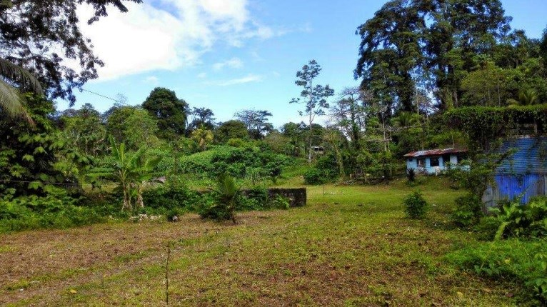 Remax real estate, Costa Rica, Moin, For Sale. Property of 2.5 Has at 1 Km from Puerto Moín, Limón.