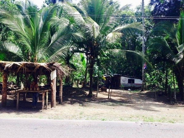 Remax real estate, Costa Rica, Cahuita, Limon GREAT OFFER-EXCELLENT OPPORTUNITY. 12.1 HECTARE. FOR INVESTORS! J