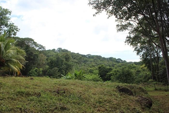 Remax real estate, Costa Rica, Uvita, Property for sale near Bahia Ballena, Uvita.
