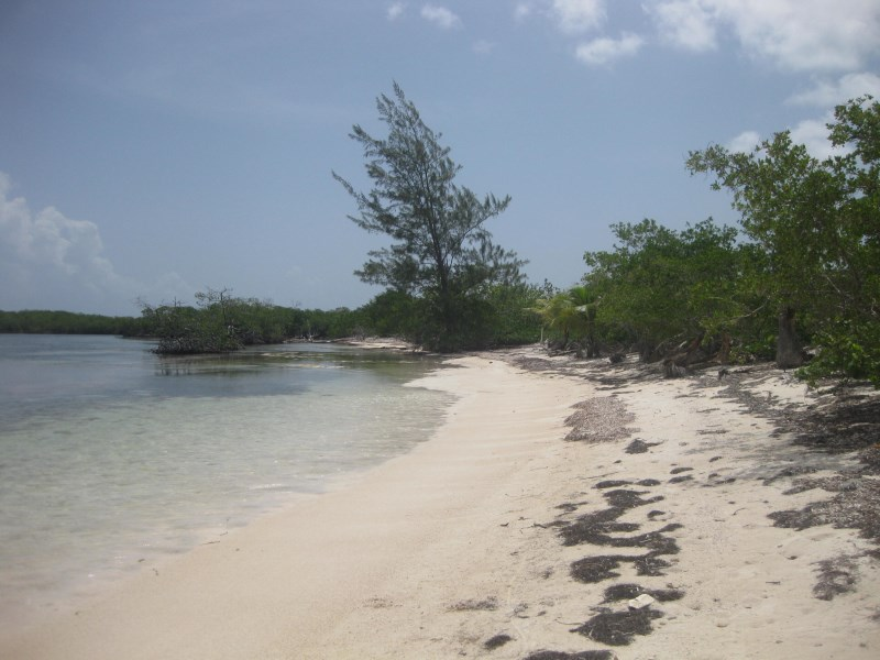 Remax real estate, Honduras, Utila,  Don Quickset  North Shore0.365 Acre Beachfront