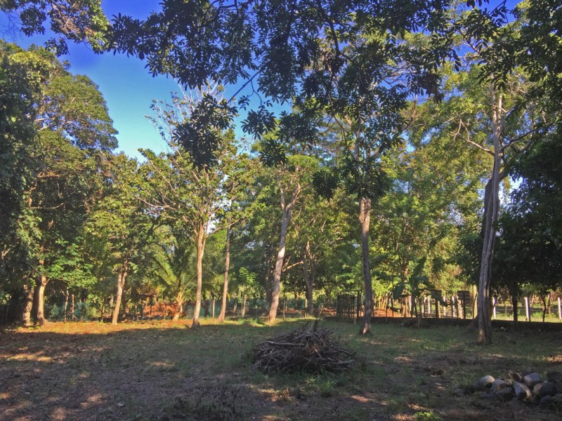 Remax real estate, Honduras, Utila, Near BICASpacious Corner Home site
