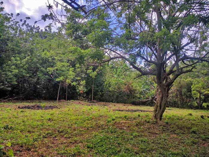 Remax real estate, Honduras, Utila, Bamboo Private PerfectionQuaint Quiet Culdesac Site
