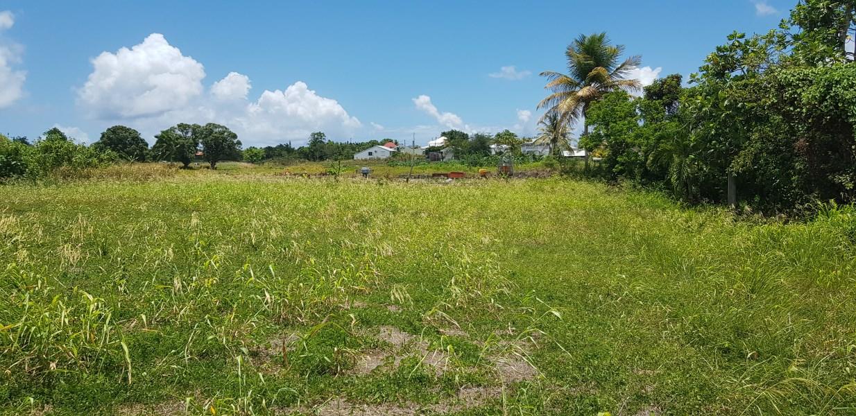 RE/MAX real estate, Guadeloupe, Saint-François, Superbe terrain Saint François