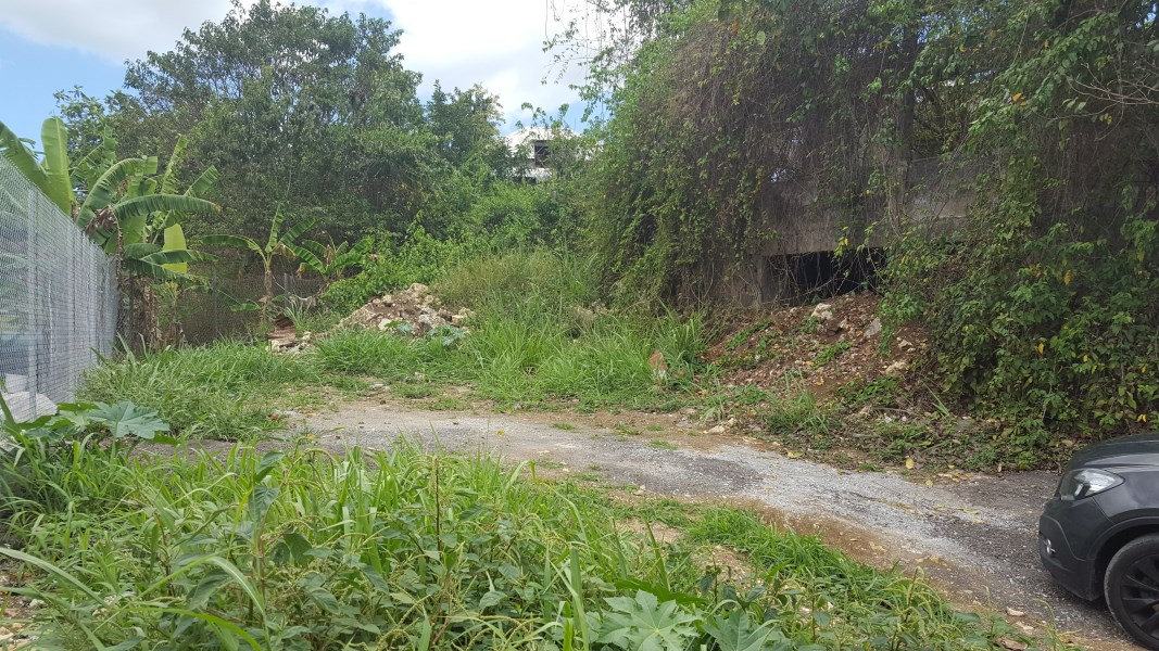 RE/MAX real estate, Guadeloupe, Les Abymes, TERRAIN 589m² LES ABYMES