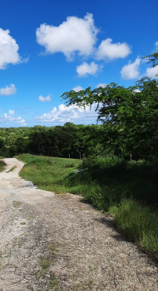 RE/MAX real estate, Guadeloupe, Baie Mahault, T3 Sainte-Anne à 3 min de Bois Jolan