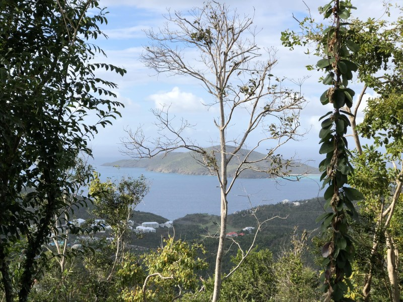 RE/MAX real estate, US Virgin Islands, St. Quaco & Zimmerman, New Listing  LotsAcres  St. Joseph  Rosendahl GNS