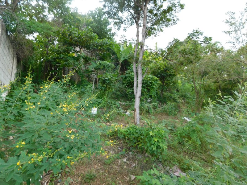 RE/MAX real estate, Haiti, Port-au-Prince - Petionville, Vacant Land with great Opportunity for sale in Pelerin 4