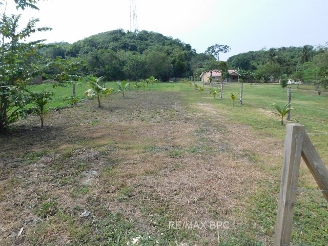 Remax real estate, Belize, Teakettle Village, ( 2384) 