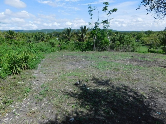 RE/MAX real estate, Belize, Bullet Tree Falls, (2396) - TWO ADJACENT HOUSE LOTS IN BULLET TREE VILLAGE NEAR SAN IGNACIO, CAYO DISTRICT