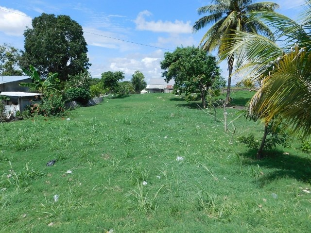 RE/MAX real estate, Belize, Santa Elena, (2001) - A RESIDENTIAL LOT IN SANTA ELENA, CAYO DISTRICT.