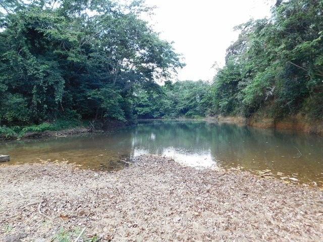 RE/MAX real estate, Belize, Trio Camp, (2006) - 2,550 ACRES OF FERTILE LAND + RIVER IN TOLEDO DISTRICT, BELIZE.