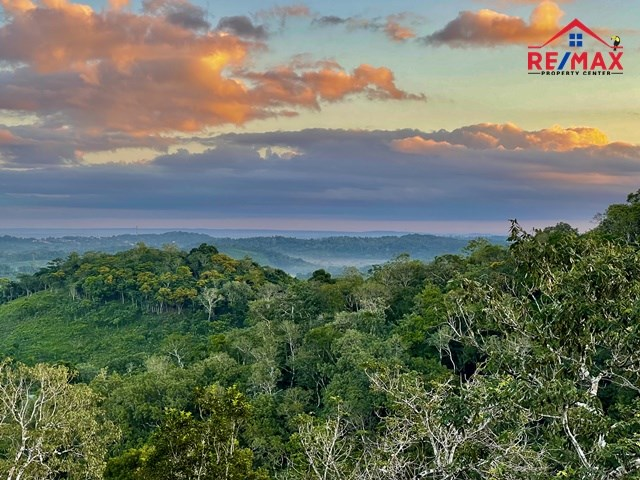 RE/MAX real estate, Belize, Chial, # 2034 – LARGE RESIDENTIAL LOTS IN A RAINFOREST COMMUNITY NEAR SAN IGNACIO