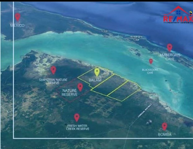 RE/MAX real estate, Belize, Campa Rita, (#2055) - 36,000 ACRES OF RAIN FOREST WITH 10 MILES OF SEA FRONTAGE.