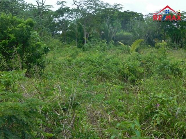 RE/MAX real estate, Belize, Belmopan, #2057 - A 3.2 ACRE PARCEL OF LAND IN A GOOD LOCATION IN BELMOPAN CITY