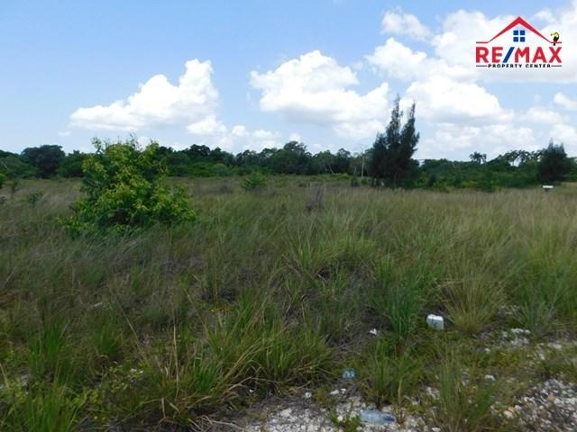 RE/MAX real estate, Belize, Ladyville, (#2058)- 4.5 ACRES OF LAND ADJACENT TO THE BELIZE INTERNATIONAL AIRPORT