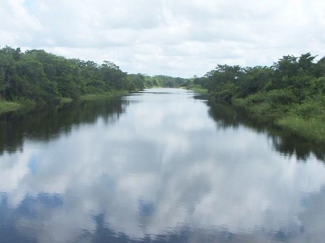 RE/MAX real estate, Belize, Rancho Dolores, #2161 – 50 ACRE PARCELS OF LAND AT RANCHO DOLORES, BELIZE DISTRICT.
