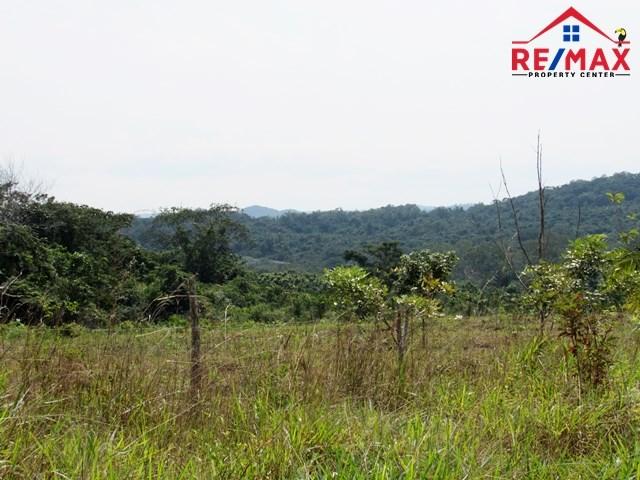 RE/MAX real estate, Belize, San Ignacio, # 4028 - 27.7 ACRES OF LAND - near SAN IGNACIO TOWN, CAYO DISTRICT