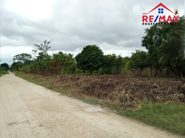 RE/MAX real estate, Belize, Teakettle, # 4034 - IDEAL 4 ACRE PROPERTY FOR OFF-GRID LIVING - near BELMOPAN CITY, CAYO DISTRICT