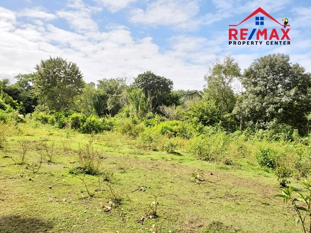 RE/MAX real estate, Belize, Teakettle, # 4037 - Large Lot in Residential Sub-division near Capital City, Belmopan