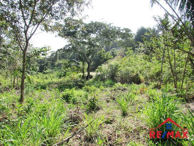 RE/MAX real estate, Belize, San Ignacio, # 4041 - Cleared Residential Lot with All Utilities - San Ignacio Town, Cayo District, Belize