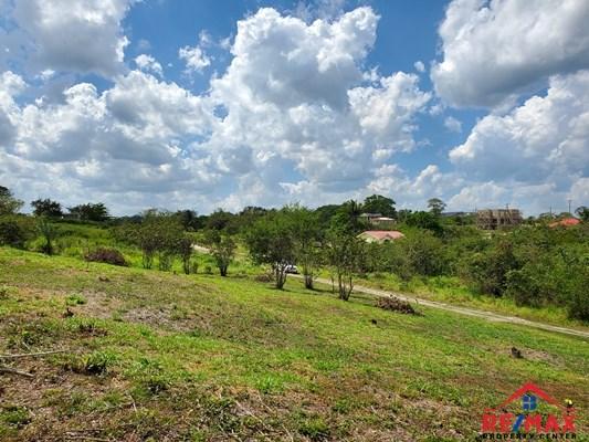 RE/MAX real estate, Belize, San Ignacio, #4044 - Four Adjacent Residential Lots in San Ignacio Town