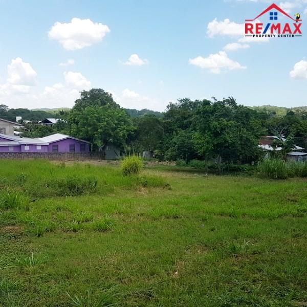 RE/MAX real estate, Belize, San Ignacio, # 4003 - UNIQUE and LARGE THREE ADJACENT LOTS near MAYAN RUIN  - SUCCOTZ VILLAGE, CAYO DISTRICT