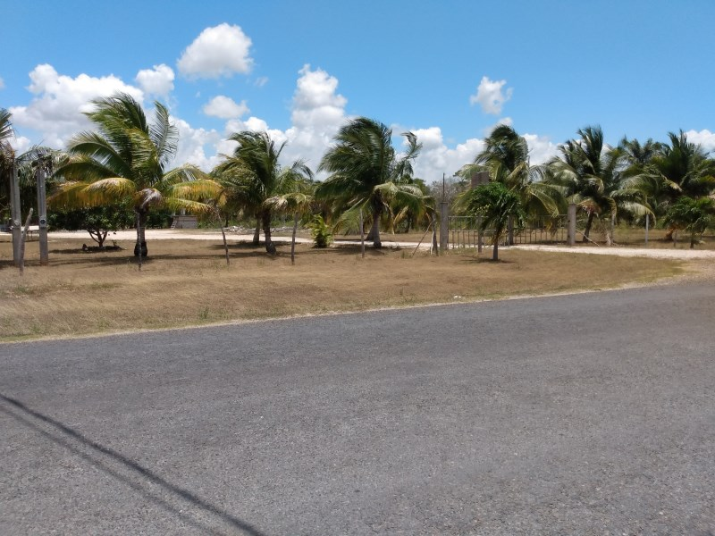 RE/MAX real estate, Belize, Xaibe,  2 Acres Great Multi-use Property with Fruit Trees