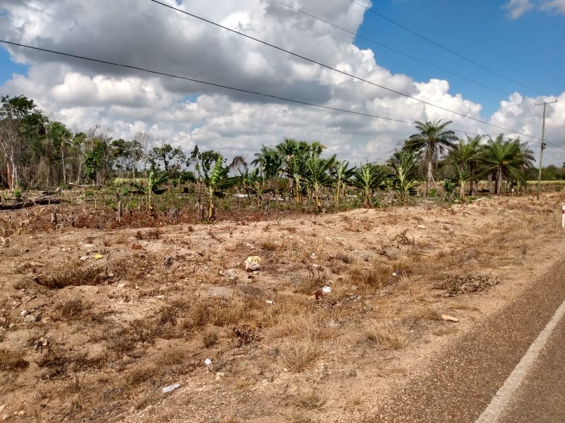 RE/MAX real estate, Belize, Xaibe, Beautiful 2.23 Acre Land Along the Main Road in Xaibe Village, Corozal District