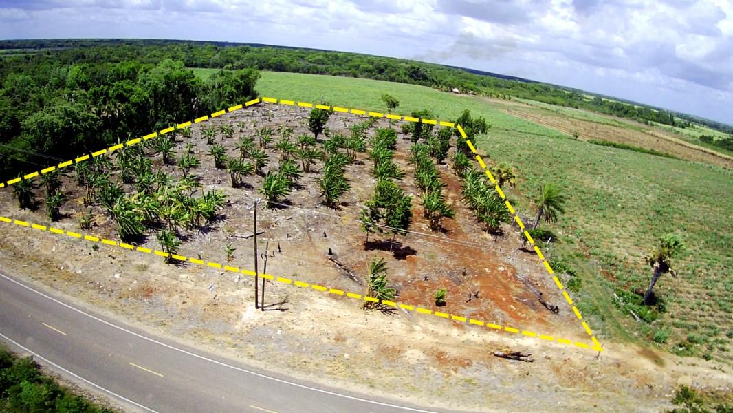 RE/MAX real estate, Belize, Xaibe, Beautiful 2.23 Acre Land Along the Main Road in Xaibe Village, Corozal District