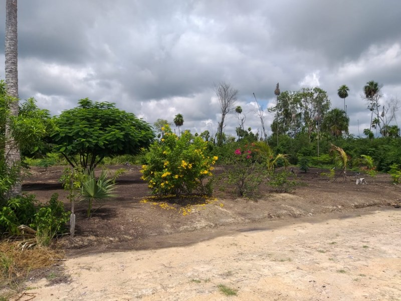 Remax real estate, Belize, Consejo, Beautiful 1/4 Acre Lot in Consejo Village, Corozal