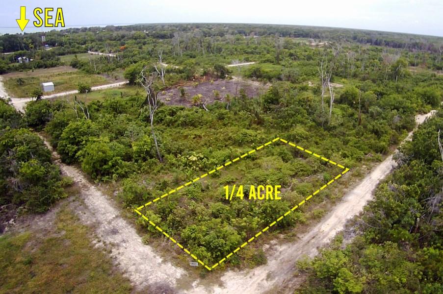 RE/MAX real estate, Belize, Consejo, 1/4 ACRE LOT IN CONSEJO, COROZAL CLOSE TO THE SEA