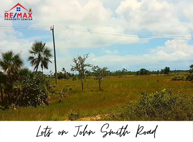 RE/MAX real estate, Belize, Belize, #1513 - Investment Opportunity on New Airport Road near Belize City