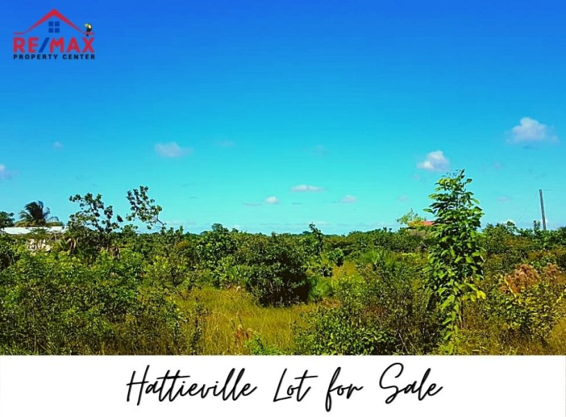 RE/MAX real estate, Belize, Hattieville, #1514 - Residential Lot in Hattieville, Belize District