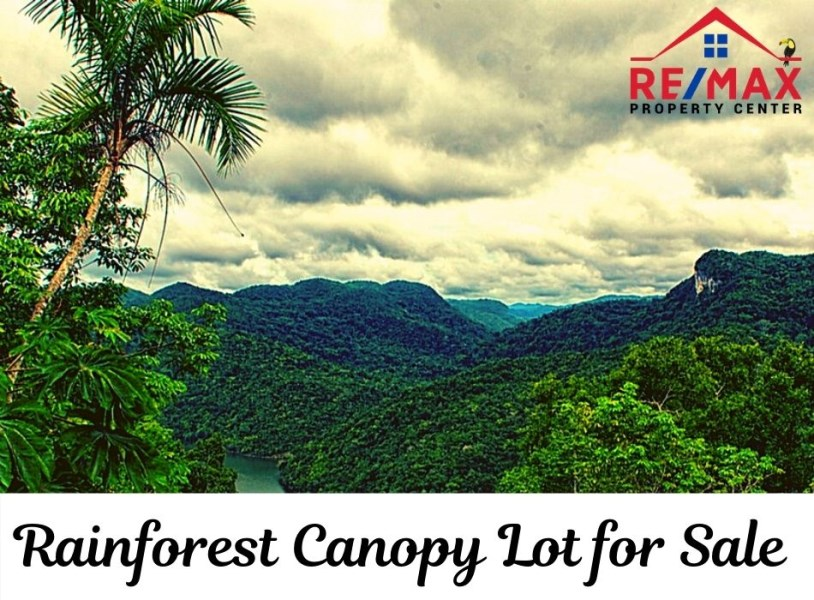 RE/MAX real estate, Belize, Benque Viejo, #7030 - Rainforest canopy lot for sale in Belize by owner