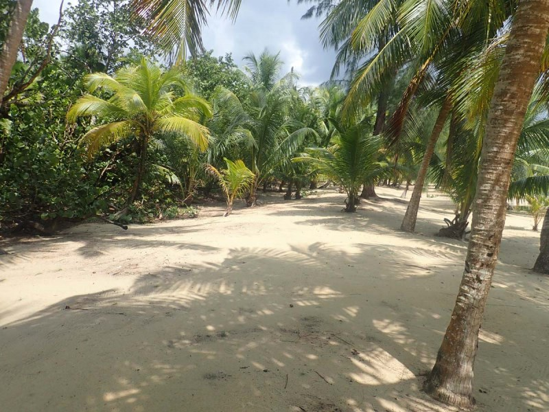 RE/MAX real estate, Belize, Monkey, 4017 - $75,000 down and interest only for 4 years, remote island living