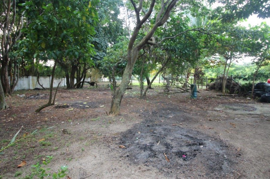 RE/MAX real estate, Belize, Placencia, 4012  Beach View Affordable Lot