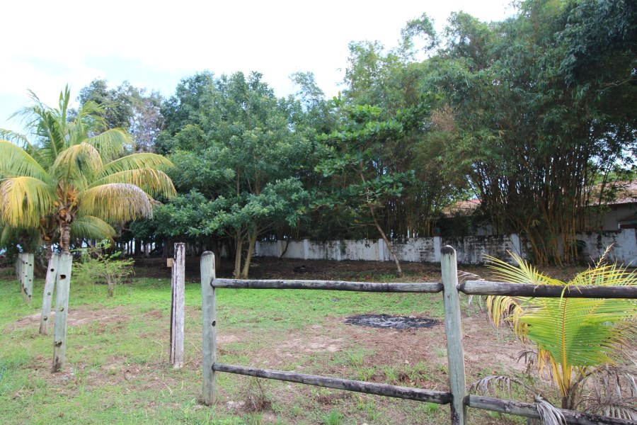 RE/MAX real estate, Belize, Placencia, 4013 - Road front lot