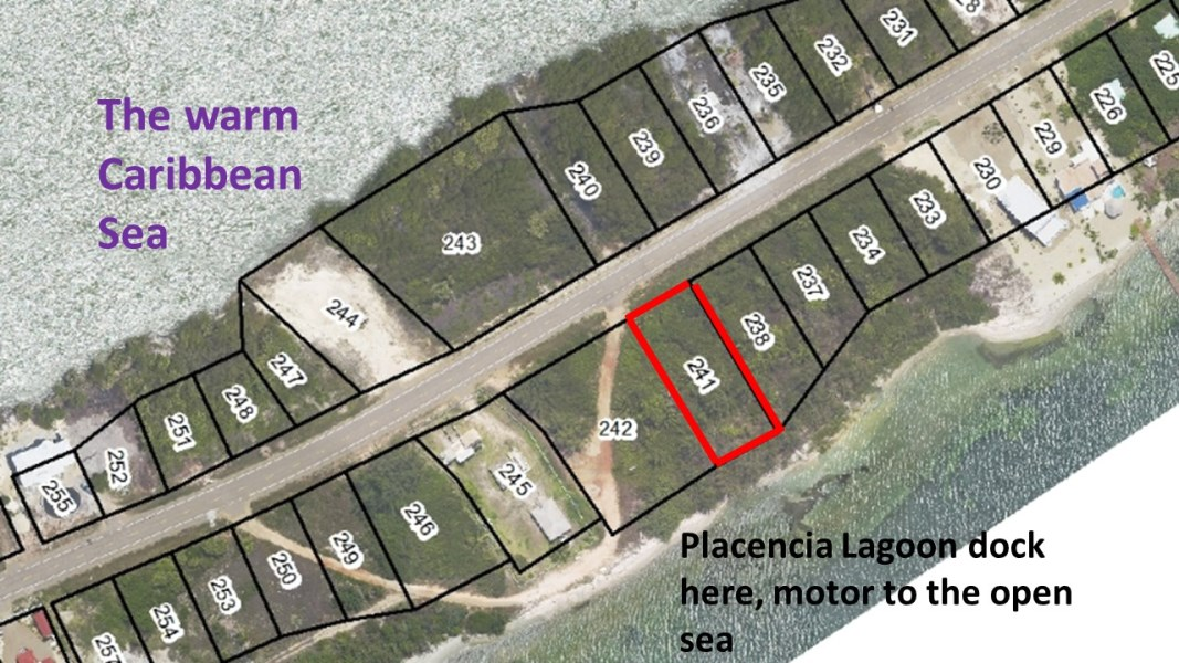 RE/MAX real estate, Belize, Placencia, Large Lagoon Lot