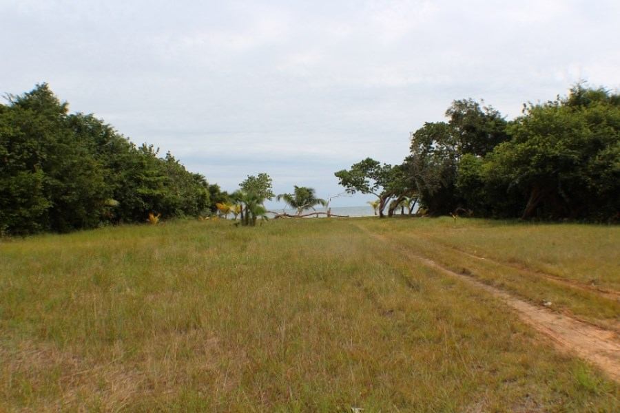 Remax real estate, Belize, Placencia, Caribbean Way Lots with Highway Frontage