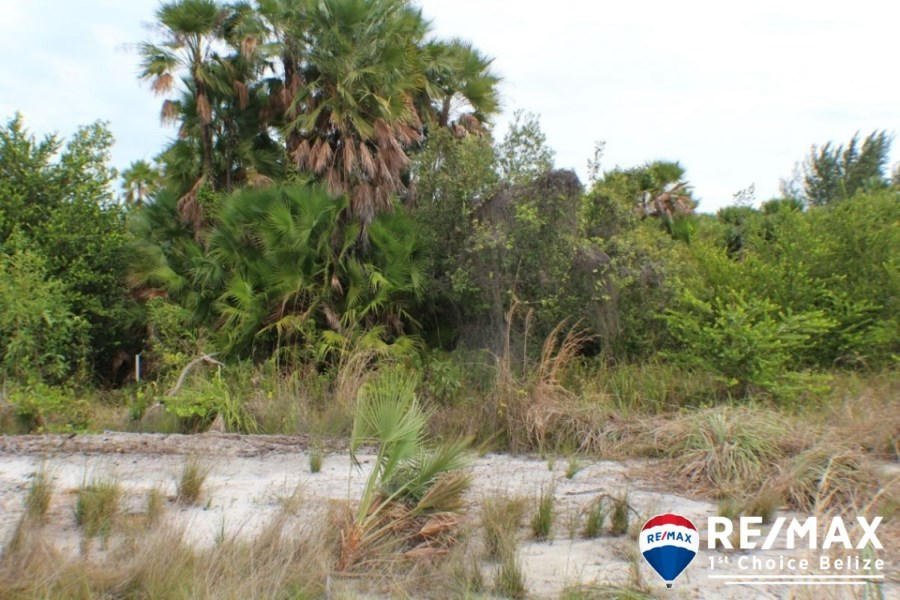 Remax real estate, Belize, Placencia, Caribbean Way Lot with Highway Frontage