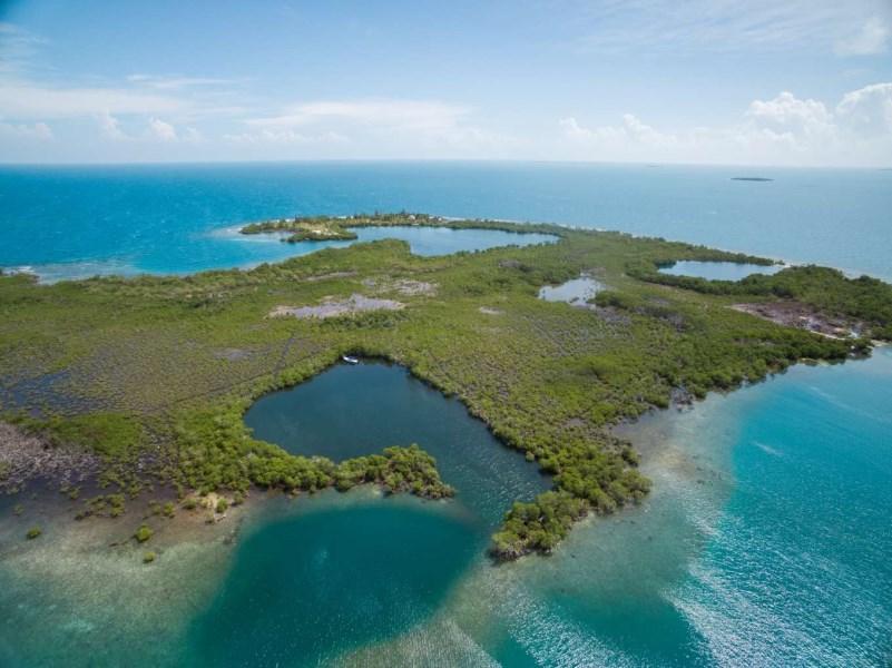 RE/MAX real estate, Belize, Placencia, Lark Caye - Impressive 5.324 Acres of Land
