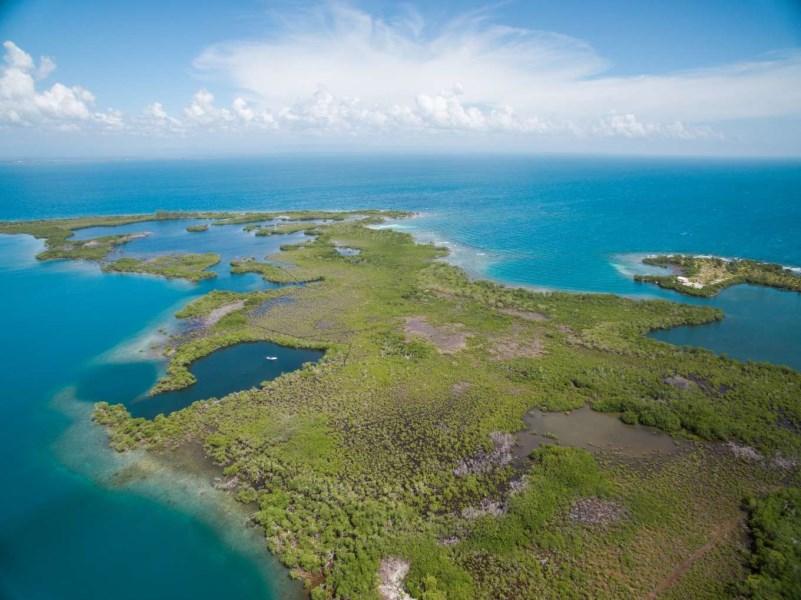 RE/MAX real estate, Belize, Placencia, Lark Caye - 13.183 Acres - Developer's Dream