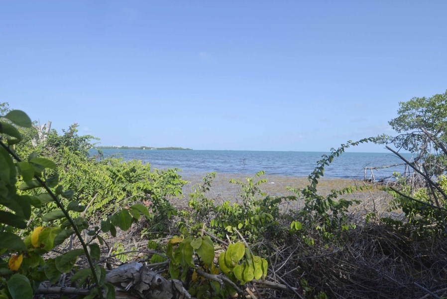 Remax real estate, Belize, Placentia Village, L6029 - Beach Front with Canal Access on Sunset Drive