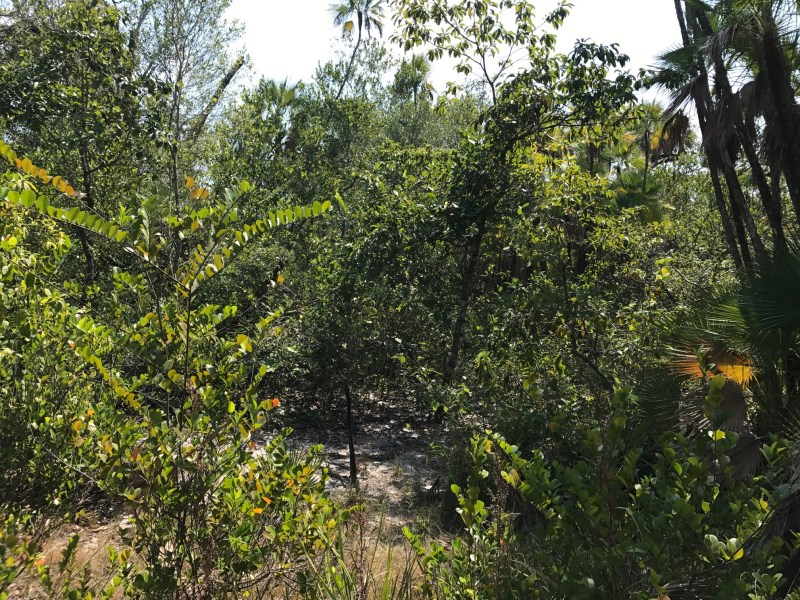 RE/MAX real estate, Belize, Maya Beach, L6976 - Lagoon Front lot in Maya Beach