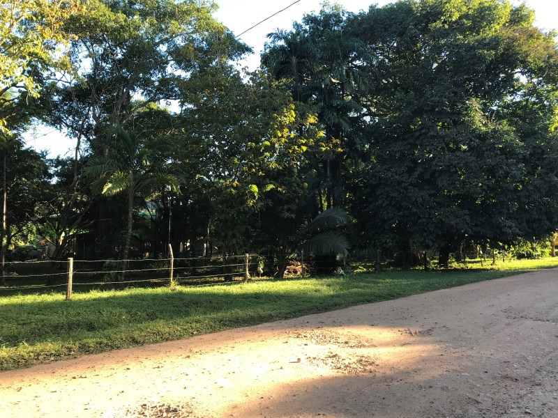 RE/MAX real estate, Belize, Sittee River, L6201 - 5.46 Acres of Farm Land