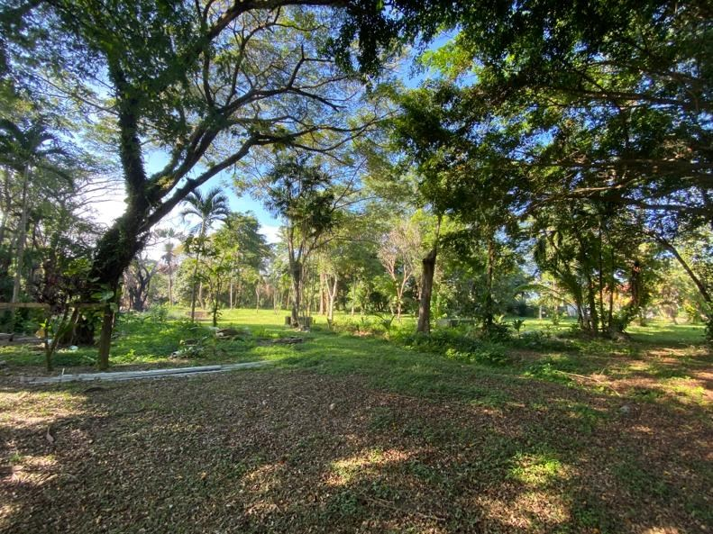 RE/MAX real estate, Belize, Sittee River,  L6203 - 3.46 Acres in Village with Sittee River Access
