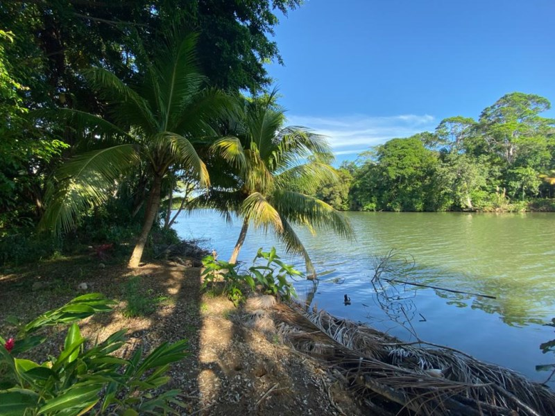 Remax real estate, Belize, Sittee River, L6206 - River Lots in Sittee River