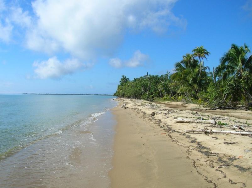 Remax real estate, Belize, Punta Gorda, Beachfront Lots In Punta Negra