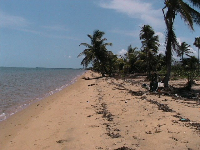 RE/MAX real estate, Belize, Gales Point, 4.88 Acres of Pristine Beachfront Property Located Near Gales Point with a All Weather Road and Gated Subdivision